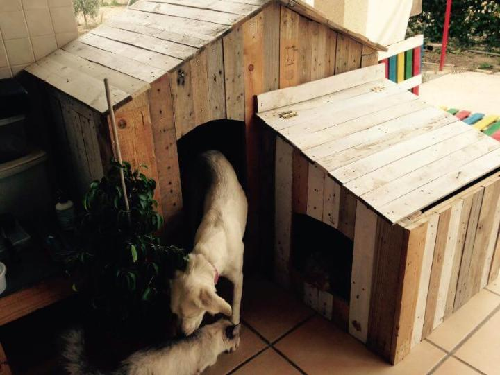 repurposed pallet dog house