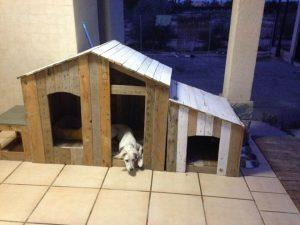 DIY Tutorial: How to Build a Pallet Dog House?