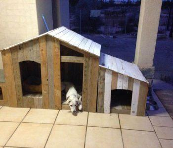 wooden pallet dog house