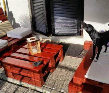 handcrafted pallet sitting furniture set