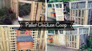 DIY Pallet Chicken Coop or Hen House!