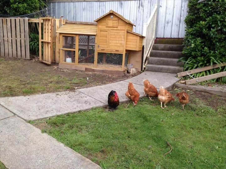 repurpose pallet hen house