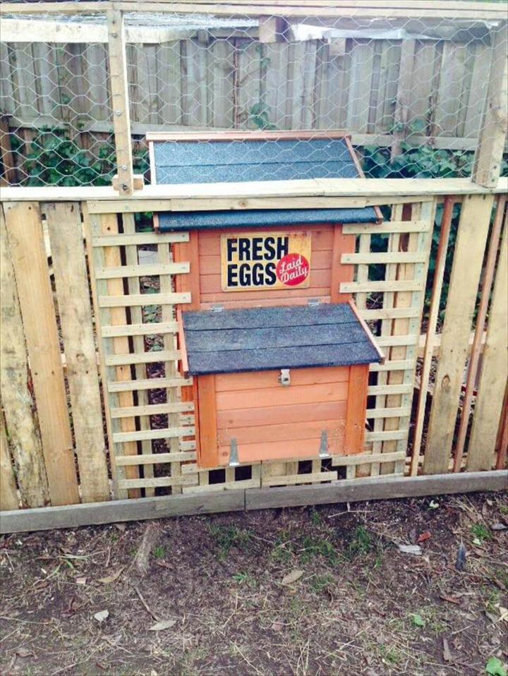 wooden pallet chicken house