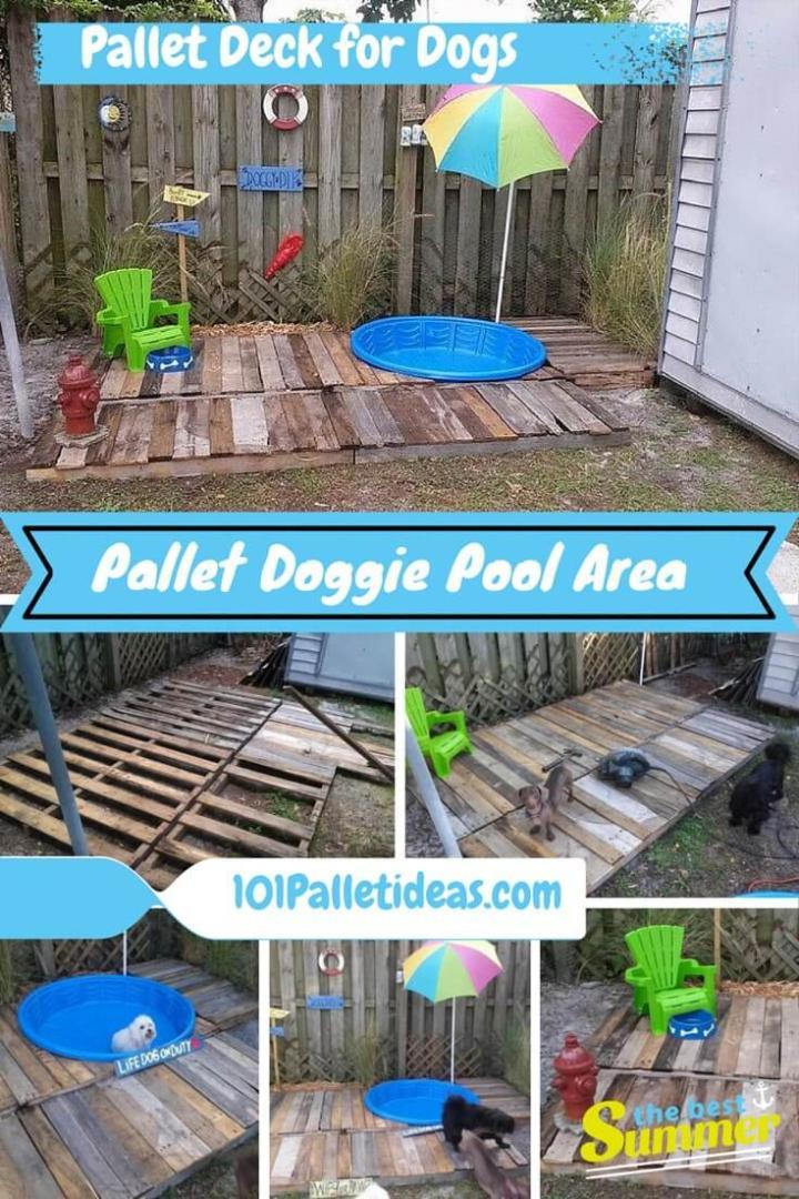Pallet Dog Pool
