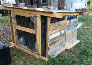 reclaimed pallet and metal chicken coop