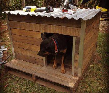 upcycled pallet doghouse with metal roof
