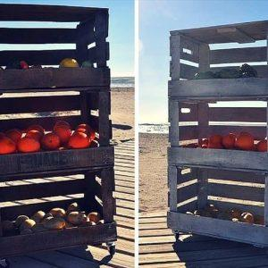 DIY Creative Projects with Pallets