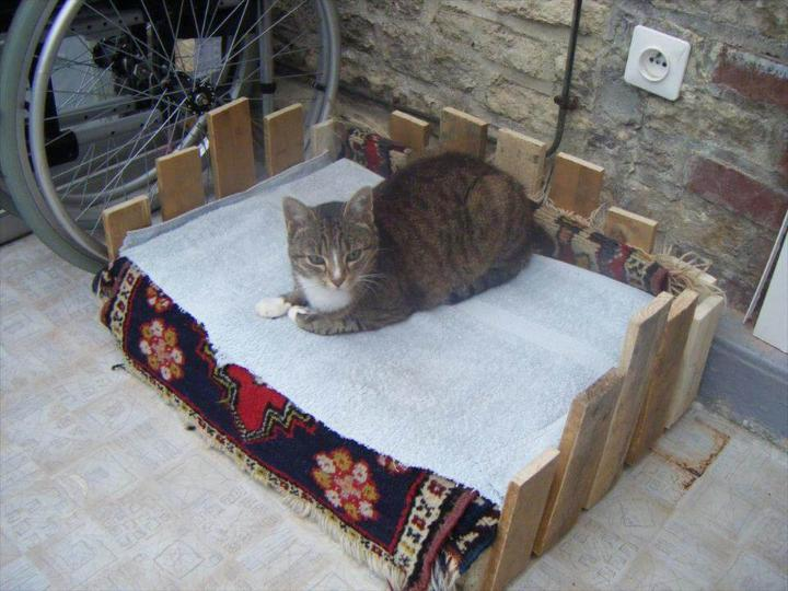 cat bed made of pallets