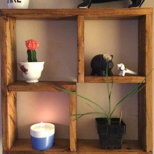 no-cost wooden pallet display shelf