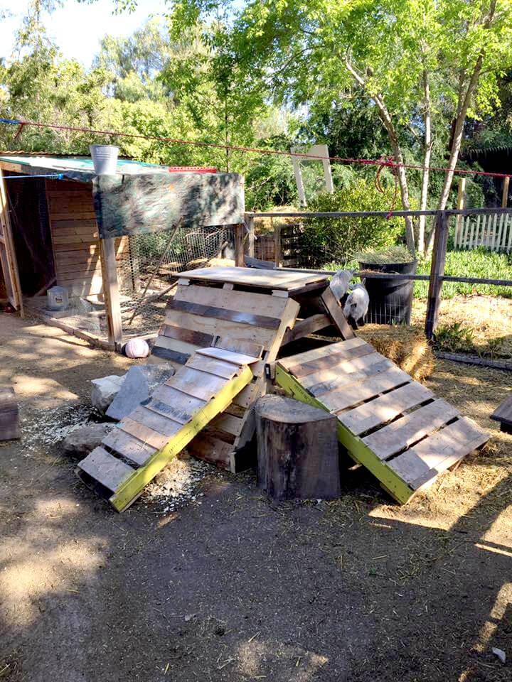 diy wooden pallet goat play station