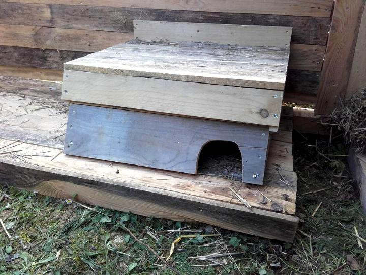 mini wooden pallet box style rabbit house