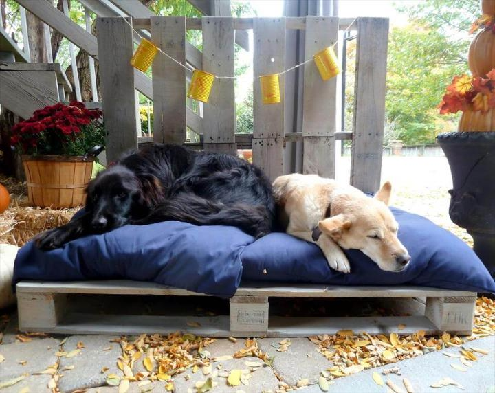 dog bed for outdoor