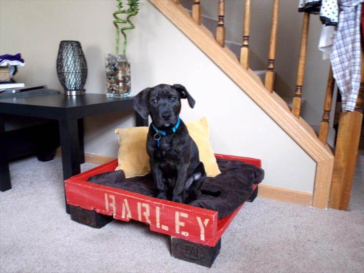 red and black pallet bed