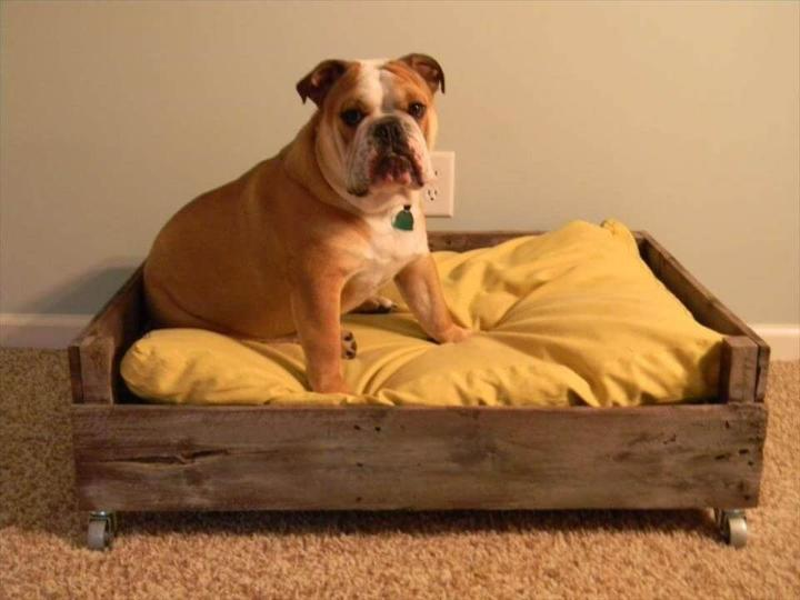 repurposed wooden pallet dog bed