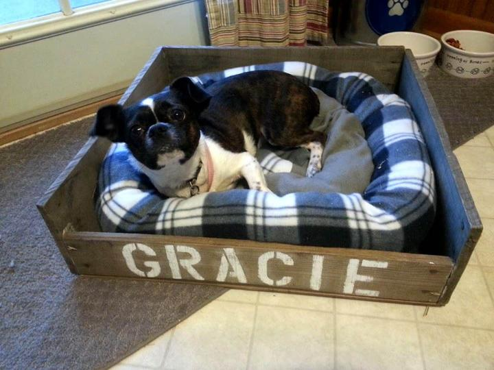 diy personalized pallet dog bed
