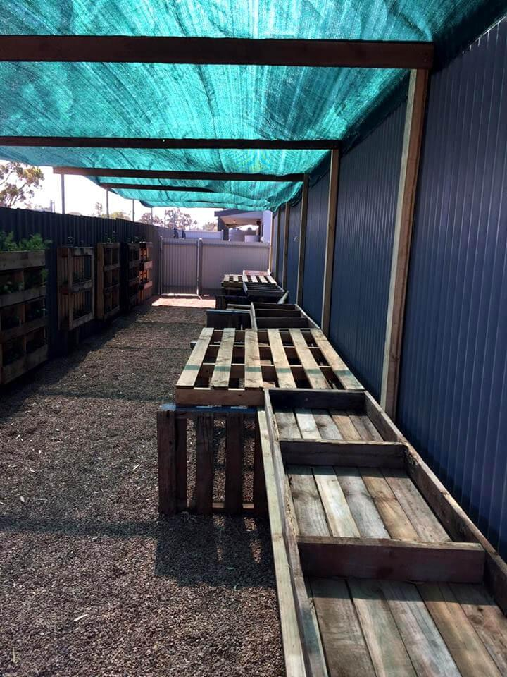 wooden pallet greenhouse