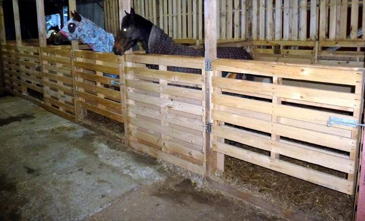 repurposed wooden pallet horse stable
