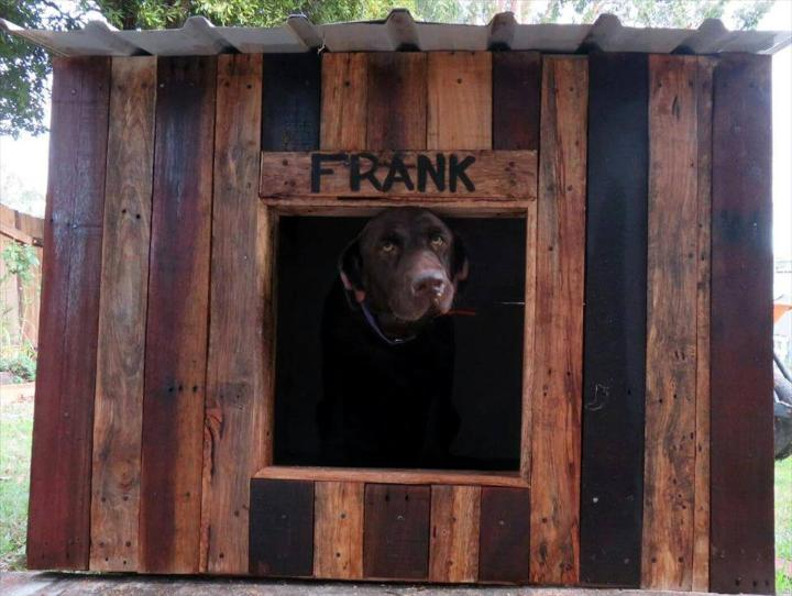 handmade pallet dog kennel with metal roof