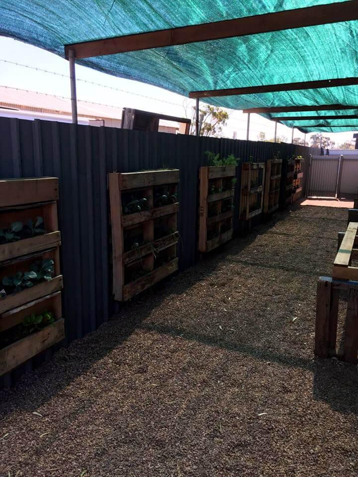 greenhouse done with pallets
