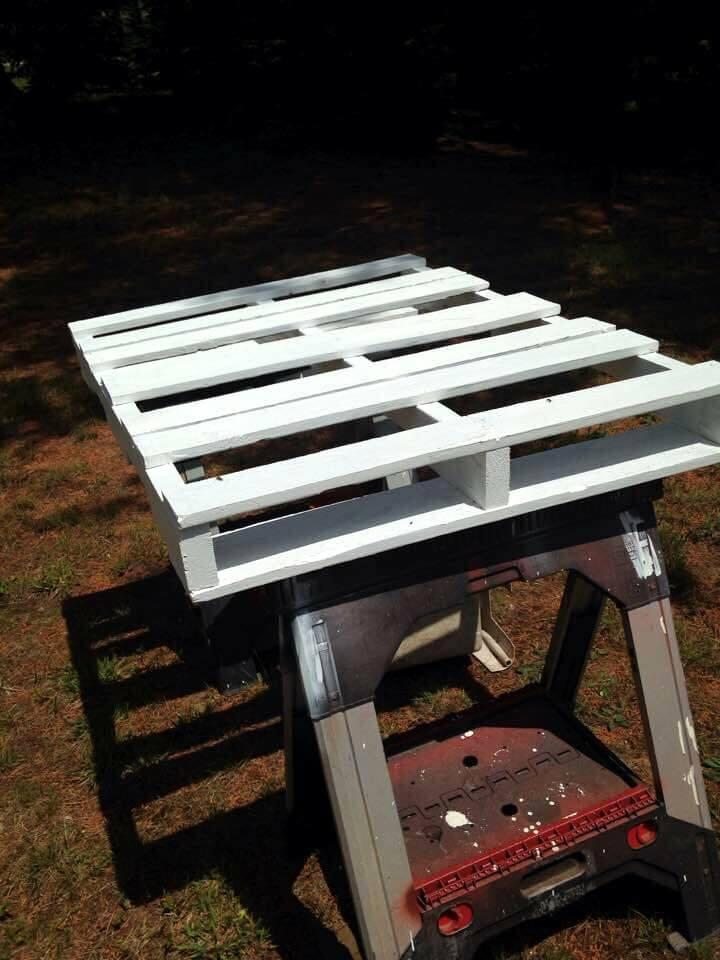 painting the pallet board in white