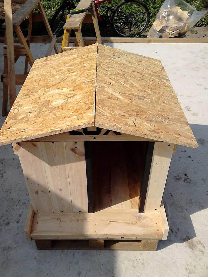 upcycled pallet dog house with plywood chevron roof