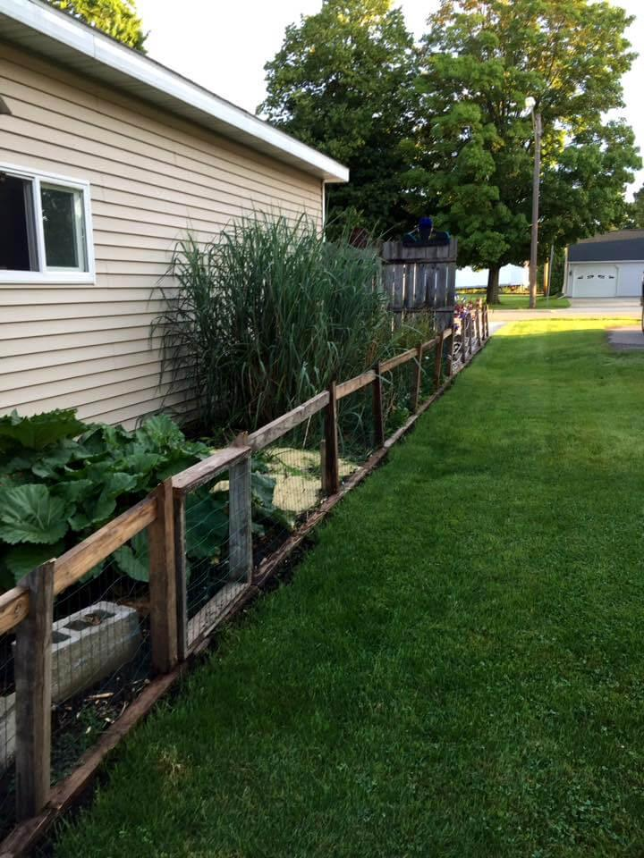 diy pallet fence for garden