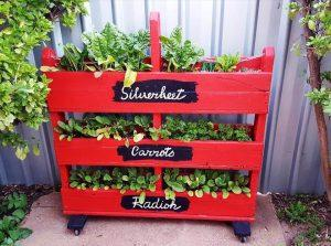 pallet vertical vegetable garden