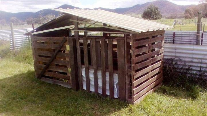 low-cost wooden pallet pet house
