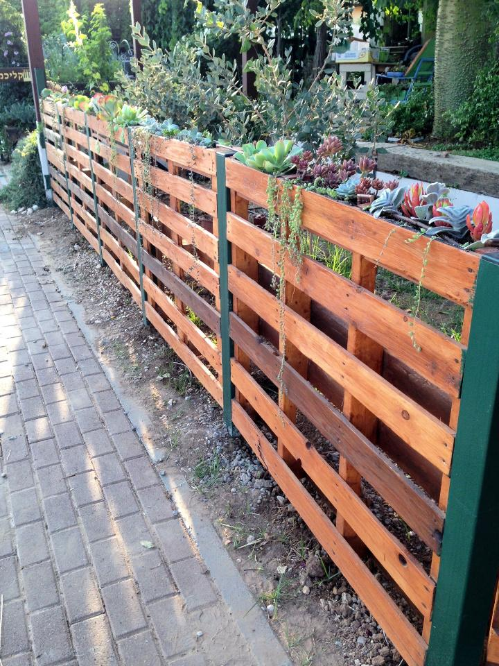 Outdoor Pallet Succulent Fence