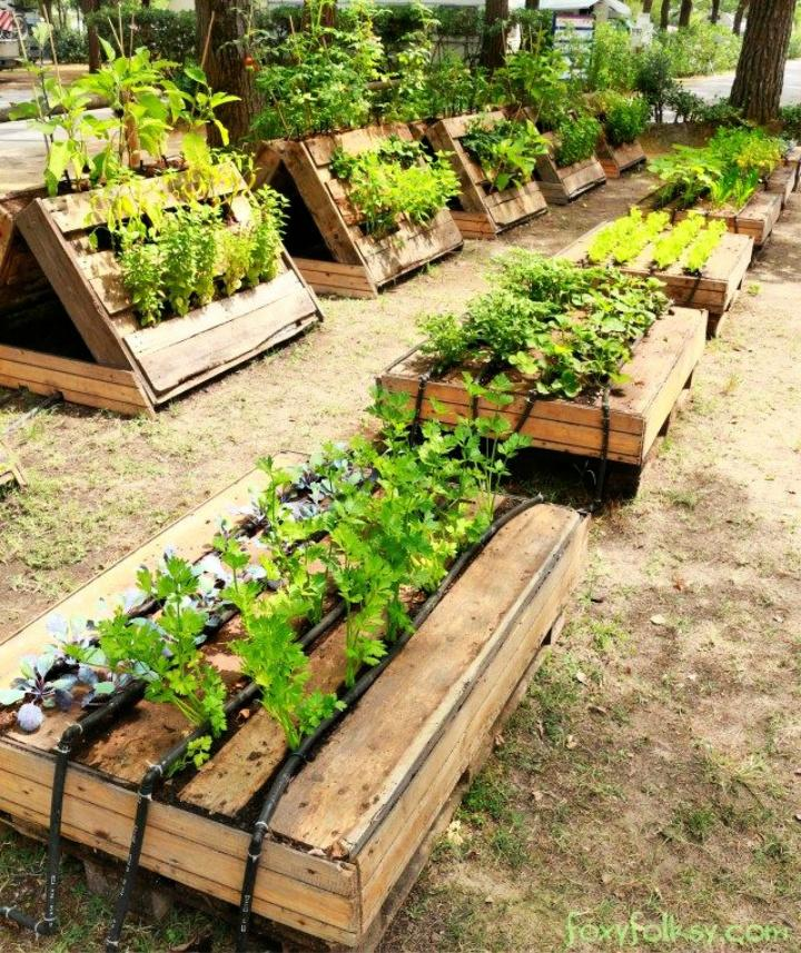 Perfect Raised Garden Beds Made out of Pallets